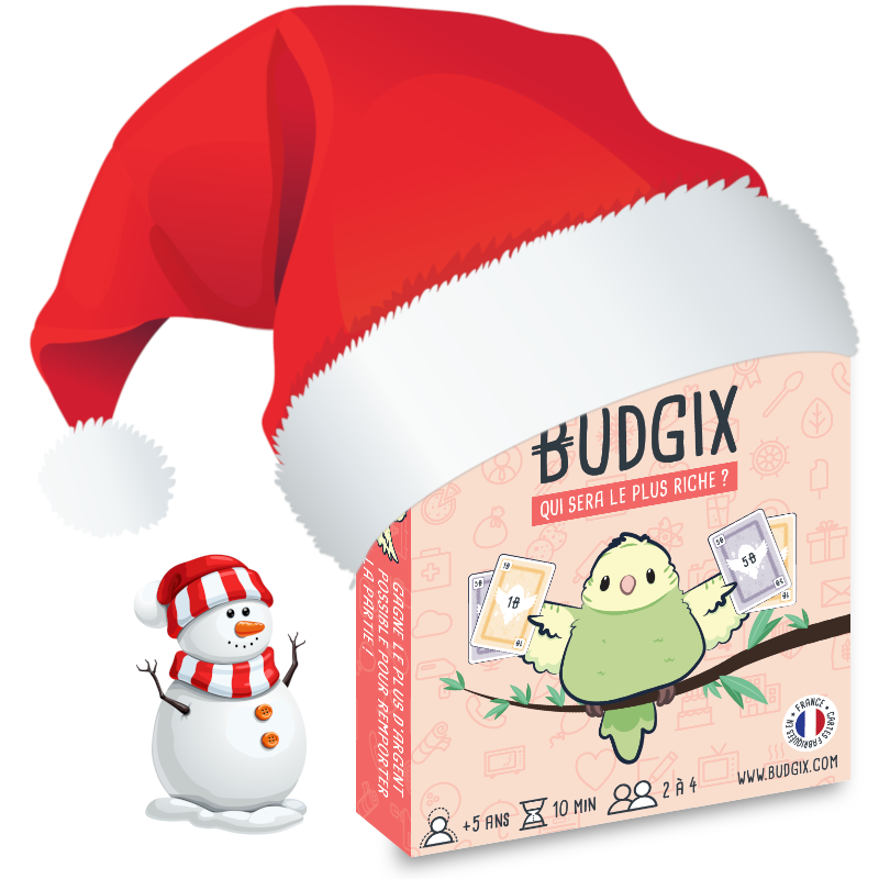 BUDGIX - jeu de cartes  pour initier les enfants à l'argent