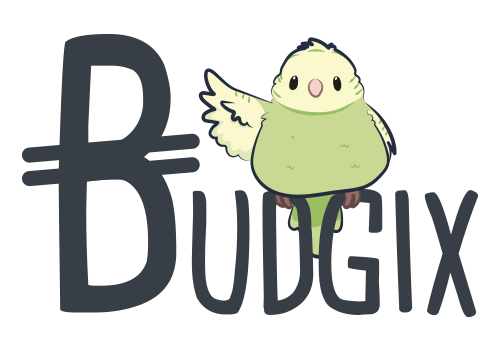 BUDGIX - jeu de cartes pour s'aumser entre amis ou en famille